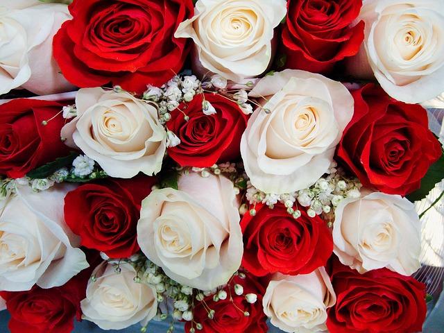 un bouquet de mariée, roses