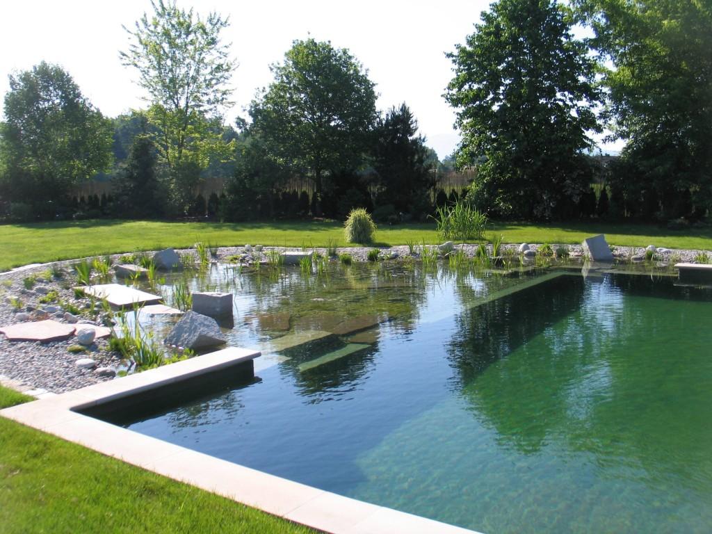 piscine_naturelle
