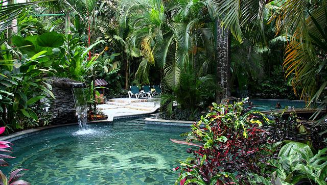 Vue une piscine d'hôtel au Costa Rica.